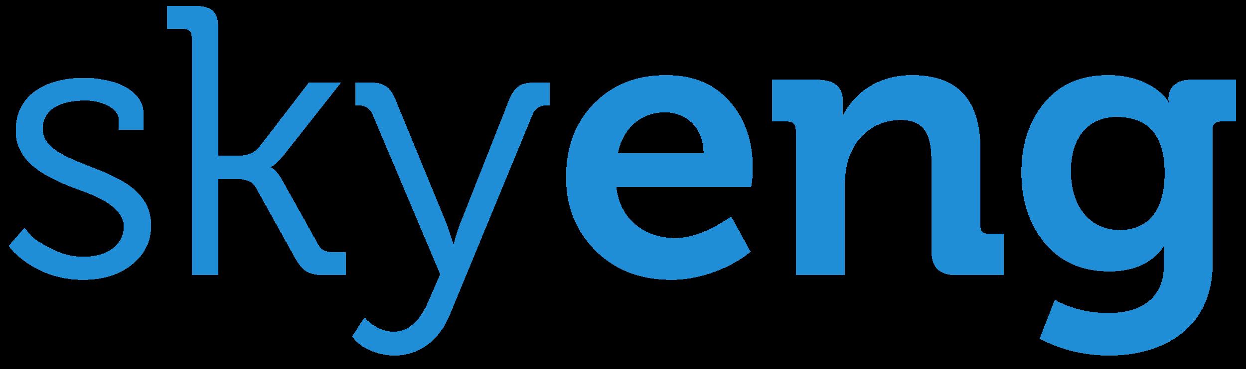 Image result for skyeng logo png